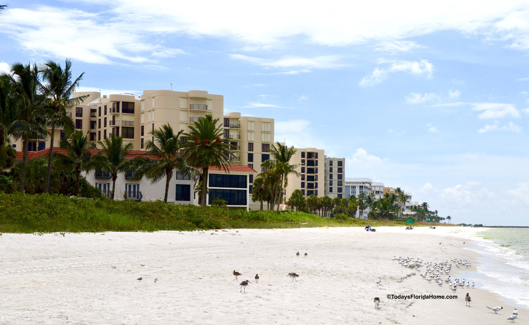 Coquina Sands Beachfront Condos, Coquina Sands, Gulf Shore Coquina Sands, Gulf Shore, Naples Beachfront, Beachfront Condos Naples, Florida Beachfront Condos, Naples Florida Beach Condos, Beachfront Florida, Southwest Florida Beachfront Condos